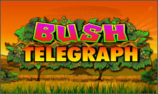 GOLDEN SLOT Bush-Telegraph